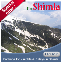 The-shimla